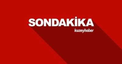 TSK açıkladı: 29 terörist öldürüldü
