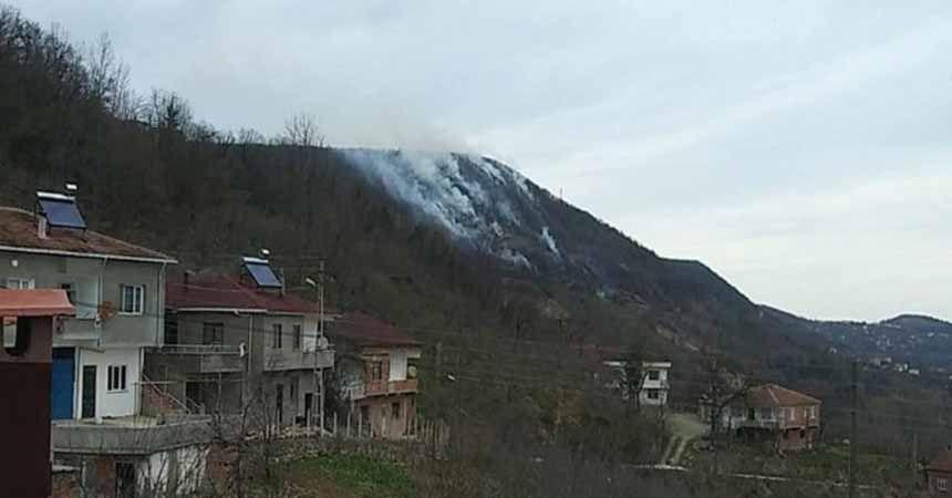 Karadeniz'de orman yangını uyarısı