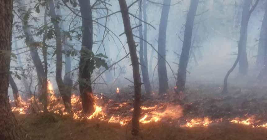Orman yangınına  helikopterli müdahale