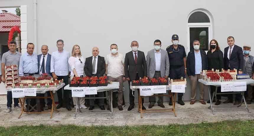 Çiftçilere 'Çilek' desteği