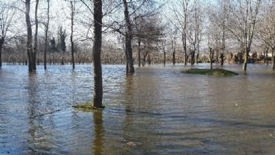 Tarım arazileri göle döndü