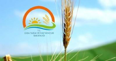 Bafra Gıda OSB'ye onay çıktı
