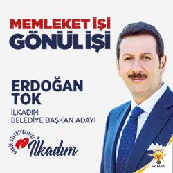 Erdoğantok